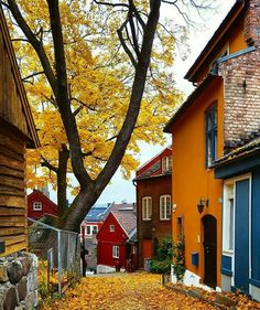 Scandinavian countries, norway oslo, norway city, beautiful places to trave Places To Travel, Places To See, Places Around The World, Around The Worlds, Wonderful Places, Beautiful Places, Landscape Photography, Travel Photography, Street Photography