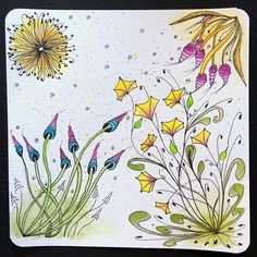 photo zingerfield.jpg  - doodled flowers