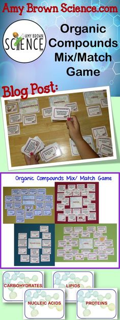 Help your students master the concepts of biochemistry and organic compounds. AmyBrownScience.com