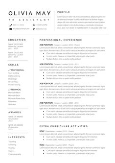 To get the job, you a need a great resume. The professionally-written, free resume examples below can help give you the inspiration you need to build an impressive resume of your own that impresses… Creative Cv Template, Template Cv, Templates Free, Cv Simple, Simple Resume, Modern Resume, Basic Resume Examples, Professional Resume Examples, Professional Resume Template