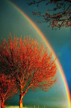 Gorgeous rainbow over fall foliage danadracost tumblr
