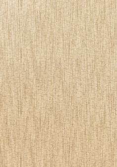 PatternCORSICA  Wallpaper Collection Grasscloth Resource 2 Colorway Beige