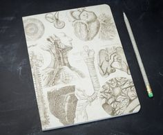 Perfect for taking notes, especially in physiology or anatomy class. Buy it here for $10.