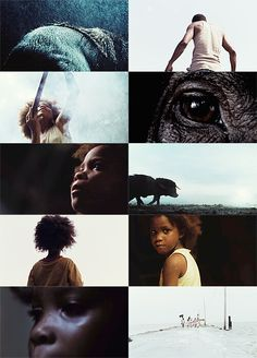 Beasts of the Southern Wild | Benh Zeitlin | cinematography Ben Richardson