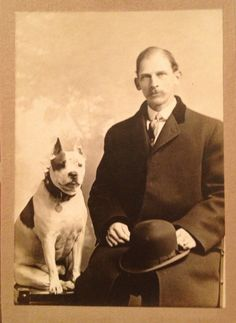 19th Century CDV Photo of Man and His Staffordshire Terrier or Pit Bull Terrier | eBay