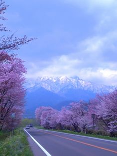On the way to Furano, Hokkaido, Japan