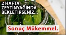 . Pickles, Cucumber, Health, Food, Zero, Album, Model, Masks, Salud