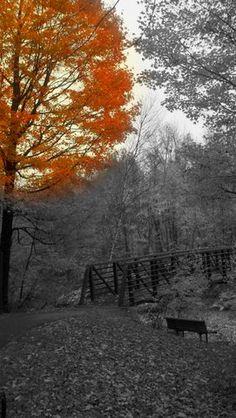 Stowe, VT Rec Path