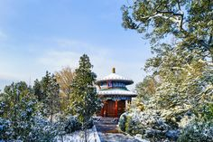 snow at beijing - snow landscape at Jingshan park near the forbidden city in beijing, with beautiful trees and buildings.