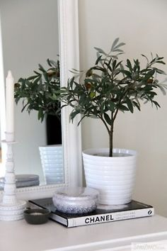 Olive Trees Voluspa Candles Apartment Chic Uppsala Latte Home Accessories