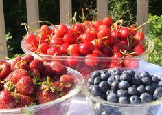 Healthy Breakfast Ideas  --  www.kellythekitchenkop.com