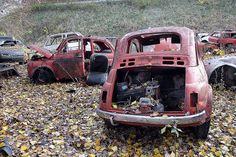 A pair of Fiat Abandoned Cars, Abandoned Vehicles, Abandoned Buildings, Fiat Cars, Fiat 600, Fiat Abarth, Rusty Cars, Matchbox Cars, Steyr