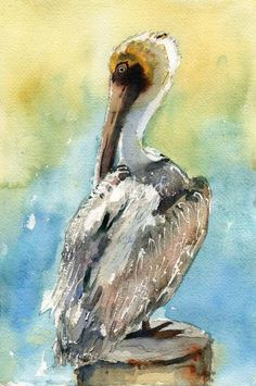 """Pelican bird art Pelican Brief"" by Miriam Schulman: If you love wildlife artwork of birds then you will love this watercolor painting of a white pelican. This original watercolor paintings pictures a white pelican with golden feathers on his beak si. Art Watercolor, Watercolor Pictures, Painting Pictures, Pelican Art, Pelican Drawing, Pelican Tattoo, Coastal Art, Fauna, Wildlife Art"