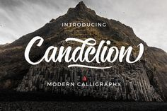 OFF 20% Candelion Script  @creativework247