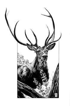 Stag Flying Dutchman, Illustration Styles, Freelance Illustrator, Moose Art, Artwork, Animals, Image, Work Of Art, Animaux