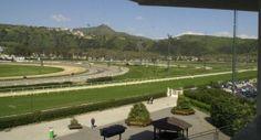 'Lungomare Trot Race': ecco il campo partentia della corsa a Napoli