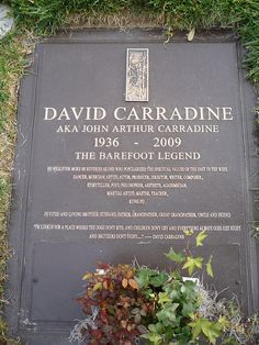 David Carradine Rest In Peace, I will never forget how you have changed my life without ever knowing or trying.  You were instrumental in my childhood and as a adult I will always remember the lessons that you taught me through my t.v. screen.
