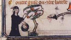 Hexen pflegten angeblich die Penisse von Männern zu stehlen und sie als Haustiere zu halten.