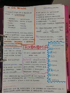 EU ESCOLHI ESTUDAR: TAXONOMIA
