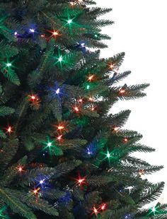 Buy Black Spruce Artificial Christmas Trees Online - Balsam Hill