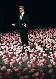 Carnations. Premiere  1. Version 30 December 1982, Opera House Wuppertal  2. Version 16 May 1983, Englischen Garten, Munich