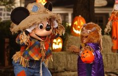 Disney has just released the dates for Mickey's Not-So-Scary Halloween Party. They have expanded the nights for the party to 29 nights this fall. Mickey's Not-So-Scary Halloween Party is our … Disney World Halloween, Disneyland Halloween, Disney World Christmas, Scary Halloween, Halloween Party, Disney Holidays, Happy Halloween, Universal Studios Florida, Disneyland California