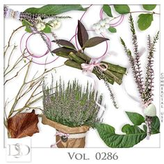 Vol. 0286 Nature Mix