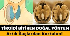 Bu iki hormon metabolizmayı düzenler ve Herb Bread, Thyroid Gland, Drug Free, Keep Fit, Herbal Medicine, Diet And Nutrition, Drugs, Detox, Herbalism