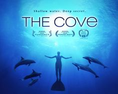 'The Cove' is a 2009 Academy Award winning documentary which highlights the brutality of the Taiji Dolphin Slaughter. It stars Ric O'Barry, the first Dolphin trainer responsible for 'Flipper'. After a Dolphin died in Ric's arms, he started his campaign to end the capture & slaughter of the Cetacea at Taiji. I would advocate anyone who has the tiniest thought of conservation & Dolphin lovers to watch this, it is guaranteed to change your life in regards to your views on the Marine Park…