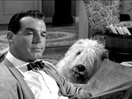 The Shaggy Dog sneaks up on Fred MacMurray