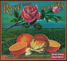 Love these vintage original orange crate labels for Rose Brand Oranges. They make me want to bite into a nice juicy orange in the California countryside. Vintage Labels, Vintage Ads, Vintage Posters, Vintage Packaging, Vintage Ephemera, Retro Advertising, Vintage Advertisements, Orange Crate Labels, Vegetable Crates