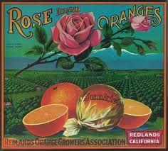 orange vintage - Pesquisa Google