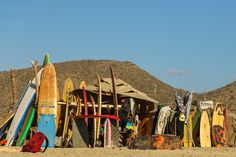 The surf shack at Los Cerritos beach, Todos Santos, Baja. I'm sure there are a million photos of this place.