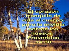 Biblia, paisajes y maravillas: Proverbios 14:30