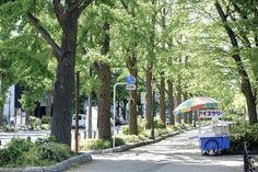Yamashita Park | Yokohama | Japan Hoppers - Japan Travel Guide