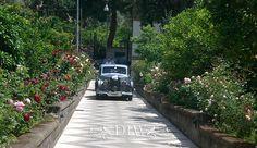 Seaview Villa - Sorrento