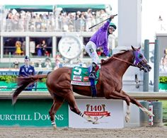 California Chrome. I was hoping to see this beautiful boy win the Triple Crown. I'm not a fan of horse racing, but it would have been cool to see.
