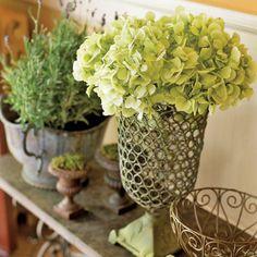 Green Arrangement from Lucinda Rooney