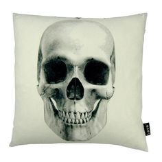 Throw Pillows You'll Love   Wayfair