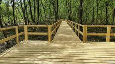 senderos pasarelas elevadas senderos elevados caminos de madera elevados hacer…