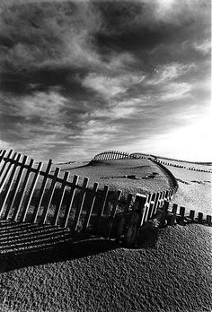 Miguel Mealha - Fence tpan, 2001. S)