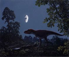 Unika bilder pa uraldrig asteroid