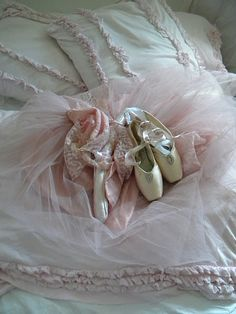 .ballet slips and tulle,♥
