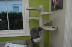 Monkee Tree Cat Climbing Ladder