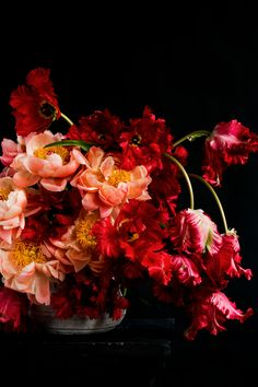 coral-peonies-red-french-tulip-arrangement