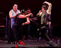 Dancers, Carmen Ledesma & Rafael de Carmen, singer Mari Peña and guitarist Antonio Moya at 9th Annual Bay Area Flamenco Festival. Photo by Christine Fu.