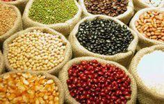 comer grãos integrais ajuda emagrecer