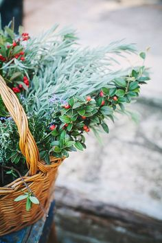 Baskets of seasonal greenery, misteltoe and herbs. Little Christmas, Country Christmas, Winter Christmas, All Things Christmas, Merry Christmas, Christmas Berries, Christmas Garden, Christmas Greenery, Green Christmas