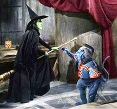 Wizard of Oz 1939 Movie   flying-monkeys-the-wizard-of-oz-400-80.jpg