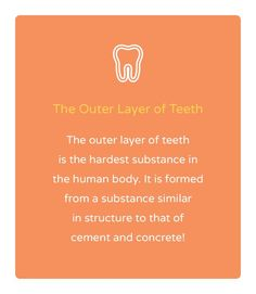 Who knew our teeth were so protected?! #FunFacts #Austin #Dentist